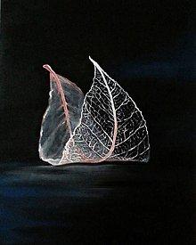 Obrazy - Leaf - 8950799_
