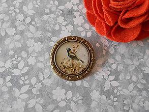 Odznaky/Brošne - Brošňa s vtáčikom III. - ZĽAVA z 3,90 eur - 8953470_