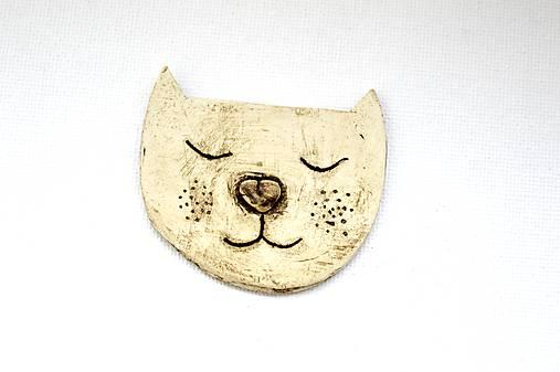 Keramická brošna Mačička