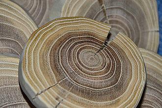 Iné doplnky - Drevené podložky - drevo AGÁT - 8961182_