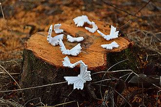 Dekorácie - Sada 10 ks čarovných motýlikov - 8963021_