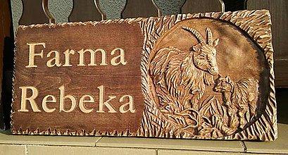 Nezaradené - Drevorezba (tabuľa na koziu farmu) - 8966400_