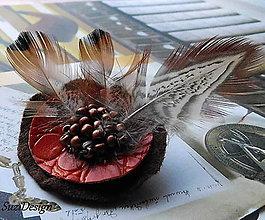 Odznaky/Brošne - poľovnícka brož kruhová bažantie pierko - 8965509_