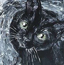 Obrazy - Čierna mačka - 8970386_