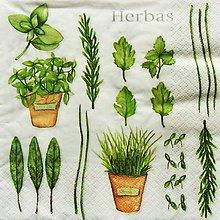 Papier - S1076 - Servítky - bylinky, herbs, petržlen, bazalka - 8981110_