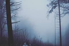 Fotografie - Zimná krajina - 8991295_