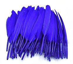 Suroviny - 54. Modré letky, mix 10ks (54.3 Kráľovsky modré) - 8997537_