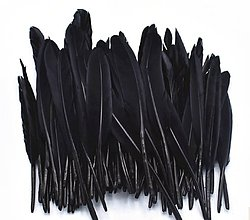 Suroviny - 54. Modré letky, mix 10ks (54.13 Čierne) - 8997882_