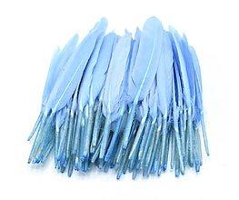 Suroviny - 54. Modré letky, mix 10ks (54.1 Bledomodré) - 8997893_