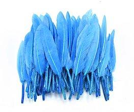 Suroviny - 54. Modré letky, mix 10ks (54.2 Modré) - 8997894_