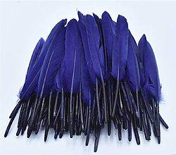 Suroviny - 54. Modré letky, mix 10ks (54.4 Modré) - 8997937_