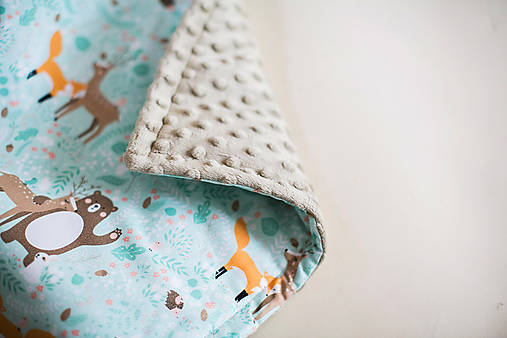 Textil - Zateplená  minky deka