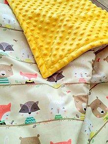 Textil - Zateplená minky deka \