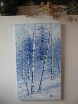 Obrazy - Zimná impresia I - 9016089_