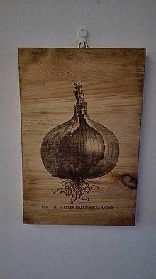 """Dekorácie - Drevená tabuľka """"Cibuľa"""" - 9016310_"""
