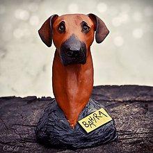 Socha - Rodézsky ridžbek - busta psa podľa fotografie - 9037479_