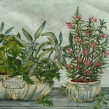 Nezaradené - S1111 - Servítky - herbs, bylinky, kvetináč, bazalka, tymián - 9043361_