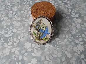 Odznaky/Brošne - Brošňa s vtáčikmi IV. - ZĽAVA zo 4,20 eur - 9048284_