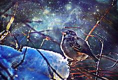 Grafika - Zahľadený do vesmíru - 9061440_