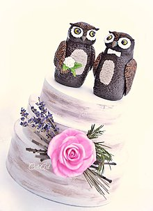 Dekorácie - Svadobné sovy - figúrky na svadobnú tortu - 9061989_