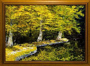 Obrazy - Rozkošná jeseň - 9072099_