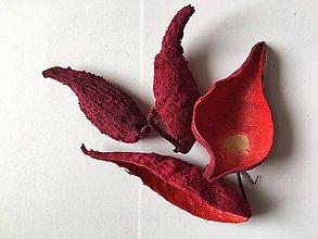 Suroviny - Červené listy kvetov - 9075951_