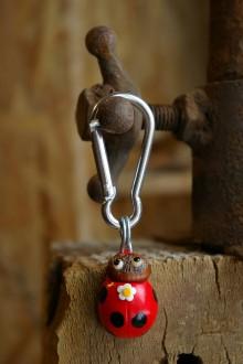 Kľúčenky - Kľúčenka LIENKA - lieskový orech - 9078441_