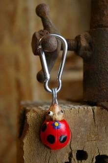 Kľúčenky - Kľúčenka LIENKA - lieskový orech - 9080193_
