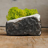 Dekorácie - miniatúrna RAKU záhrada - REINDEER MOSS - 9084967_