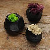 Dekorácie - miniatúrna RAKU záhrada - REINDEER MOSS - 9085046_