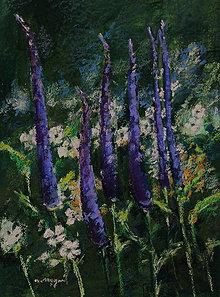 Obrazy - Veronika vo večernej záhrade - 9084203_