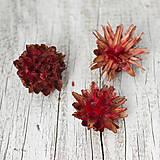 Iný materiál - Červené kvety Plumosum - 9104553_