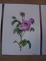 Obrazy - Maľba : Ruže - 9103514_