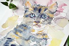 - Zvierací portrét 2 - mačiatko, akvarel - 9113360_