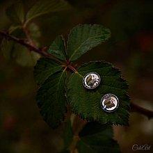 Náušnice - Motýle - puzetové náušnice - 9118280_