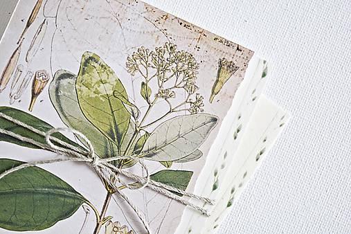 Papiernictvo - Botanický pozdrav/kartička I - 9123139_