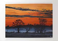 Obrazy - Obraz - Les, západ slnka na safari - 9128077_