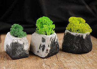 Dekorácie - miniatúrna RAKU záhrada - REINDEER MOSS - 9124806_
