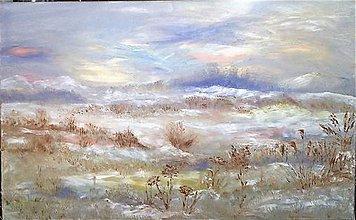 Obrazy - snežná planina - 9132749_