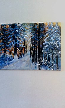 Obrazy - Zima v Tatrách - 9131131_