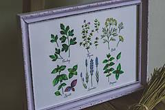 Obrázky - Bylinky (Bylinky vo fialovom ráme (1ks)) - 9145291_