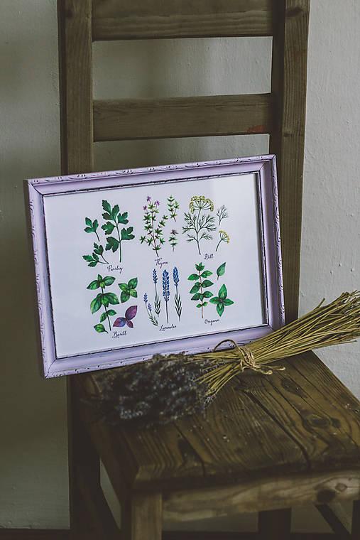 Bylinky - predané (Bylinky vo fialovom ráme (1ks))