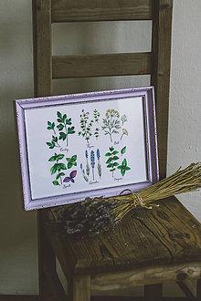 Obrázky - Bylinky - predané (Bylinky vo fialovom ráme (1ks)) - 9145301_