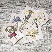 Papier - Kvetinové nálepky - 9152452_