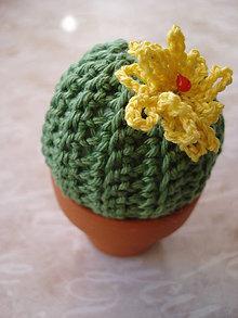 Dekorácie - Som tvoj kaktus!!! - 9150648_