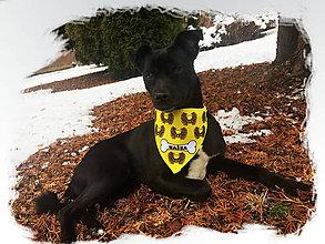 Šatky - Šatka pre psíka lebky 1 - 9168987_
