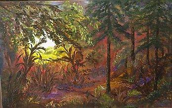 Obrazy - V začarovanom  lese - 9179753_