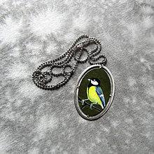 """Náhrdelníky - Malovaný medailon """"Sýkorka"""" - 9186175_"""