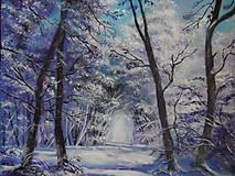 Obrazy - Kúzlenie zimy - 9192945_