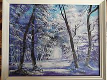 Obrazy - Kúzlenie zimy - 9192946_